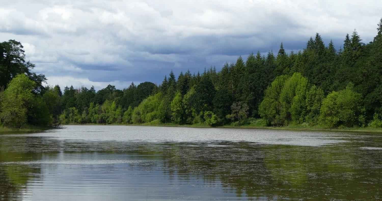 Vancouver Audubon Society
